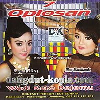 Pergilah Kasih - Deviana Safara - Sonata Vol 7 2013 dangdut-koplo.com.mp3