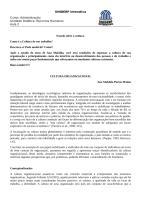 22-05-0913-36-06Aula_2_CULTURA_ORGANIZACIONAL.doc