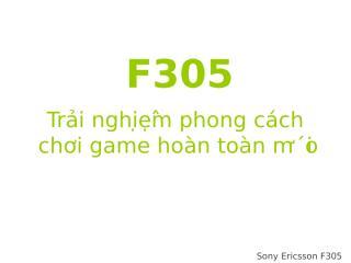 F305_vietnamese_10.01.2009.ppt