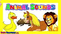 Animal ABCs + More _ Collection of Animals Songs, Childrens Finger Family Cartoon Nursery Rhymes.mp4